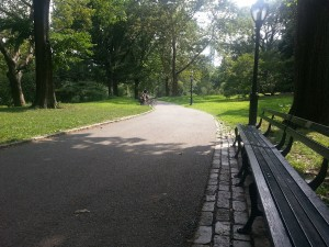 After the museum, we took a leisurely walk in Central Park. Such a beautiful, peaceful place in the middle of the craziness.